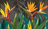 «Tropical flowers strelitzia dark» wall mural | Modern Premium Design large fragment