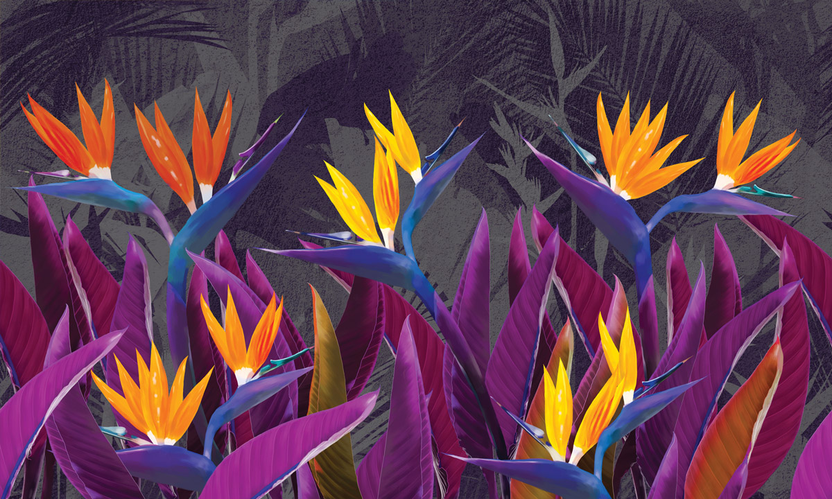 «Tropical flowers strelitzia purple» wall mural | Modern Premium Design